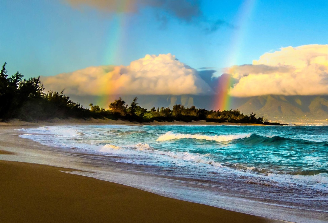 Maui Tropical Vacations Blog Hawaii Vacation Guide News
